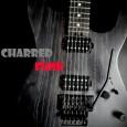 """DeFox Records e Heart Of Steel Records sono orgogliosi di annunciare il debut EP di un'entusiasmante band hard rock di New York chiamata CHARRED FUNK.L'album intitolato """"Charred Funk"""" contiene cinque […]"""